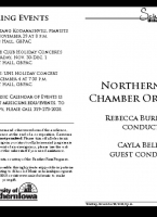 Northern Iowa Chamber Orchestra - November 28, 2019